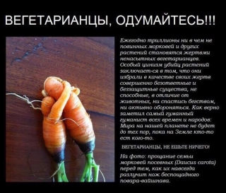 http://maglab.ru/extensions/quadric_image_assistant//uploads/users/1000/61/thumb/o_1cv5dn19t1pufbos117f12n611au7.jpg