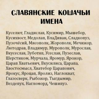 http://maglab.ru/extensions/quadric_image_assistant//uploads/users/1000/61/thumb/o_1dp8gqk7l1sph1d1s1khgrk1b2b7.jpg