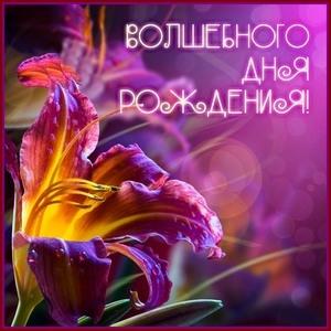 http://maglab.ru/extensions/quadric_image_assistant//uploads/users/2000/1822/thumb/o_1d3uu5op71pnrv7b15kt1bagqnj7.jpg