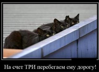 https://maglab.ru/extensions/quadric_image_assistant//uploads/users/1000/61/thumb/o_1ffkoigjv27d1b6c1qkv13r01ijc7.jpg